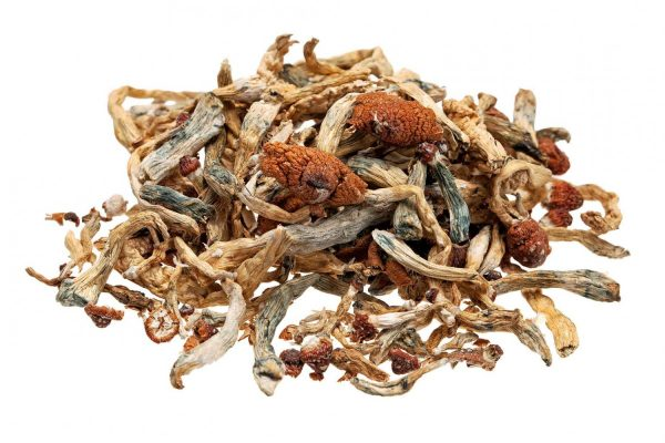 psychedelic mushrooms for sale